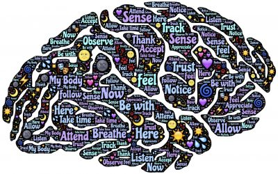 AUDITORY SENSATIONS – YOUR BRAIN ON SOUND – FCP AUDIO